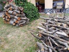 Dió tűzifa sürgősen eladó