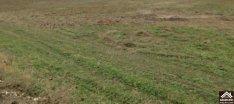 Eladó mezőgazdasági, Dabas, 1186 m2