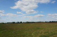 Eladó mezőgazdasági ingatlan Nagykőrös