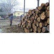 Erdőgazdálkodás ból tűzifa eladó!