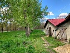 Hajdúhadház, eladó mezőgazdasági