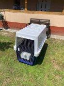 IATA kompatibilis élő állat szállító box