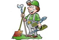 Kertépítés, metszés, fűnyírás, bozótirtás, favágás, sövénynyírás