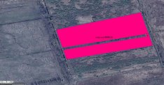 Keszthelyen 958 nm-es osztatlan közös erdő eladó