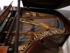 Kituno allapotu Forster zongora