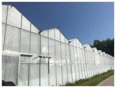 Működő üvegházak, termál kúttal, raktárházzal!!
