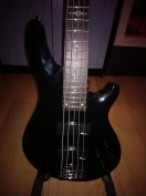 Sgr( by Schecter)