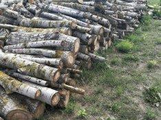 Száraz nyárfa tűzifa kályha készen