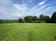 Zalasárszegen 14949 m2-es mezőgazdasági terület eladó!