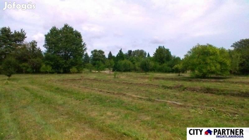 Eladó mezőgazdasági, Pusztaszentlászló, 430 m2
