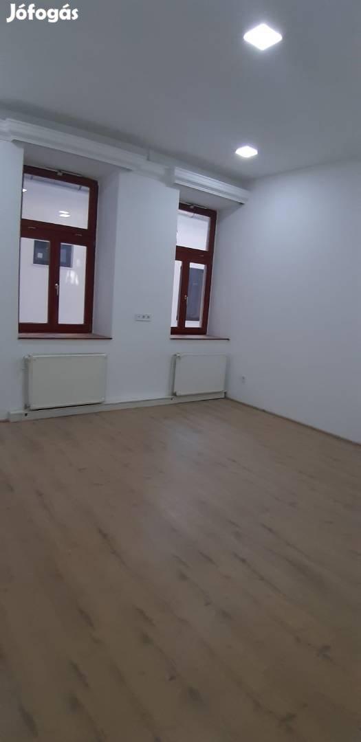 Frissen felújított, 0 perces lakás, ElsŐ BÉrlŐjÉt várja,ÁllatbarÁt, 6. Kép