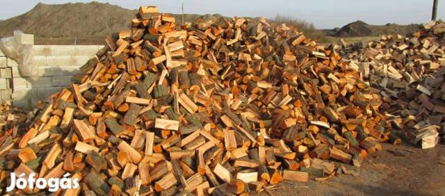 Hasított tűzifa eladó akciós áron