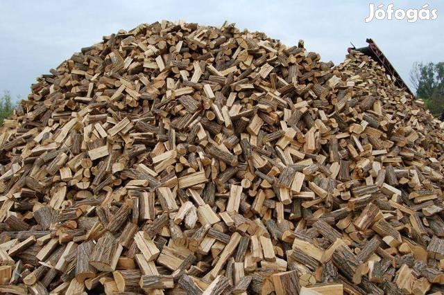 Hasított tűzifa eladó akciós áron!