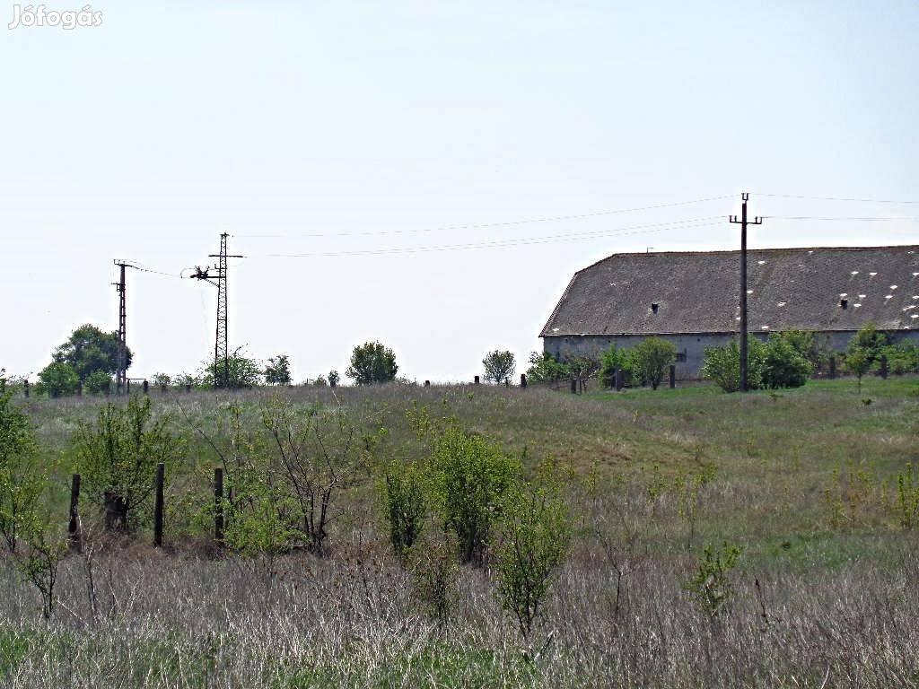 Sárbogárdon művelési ágból kivont mezőgazdasági terület eladó