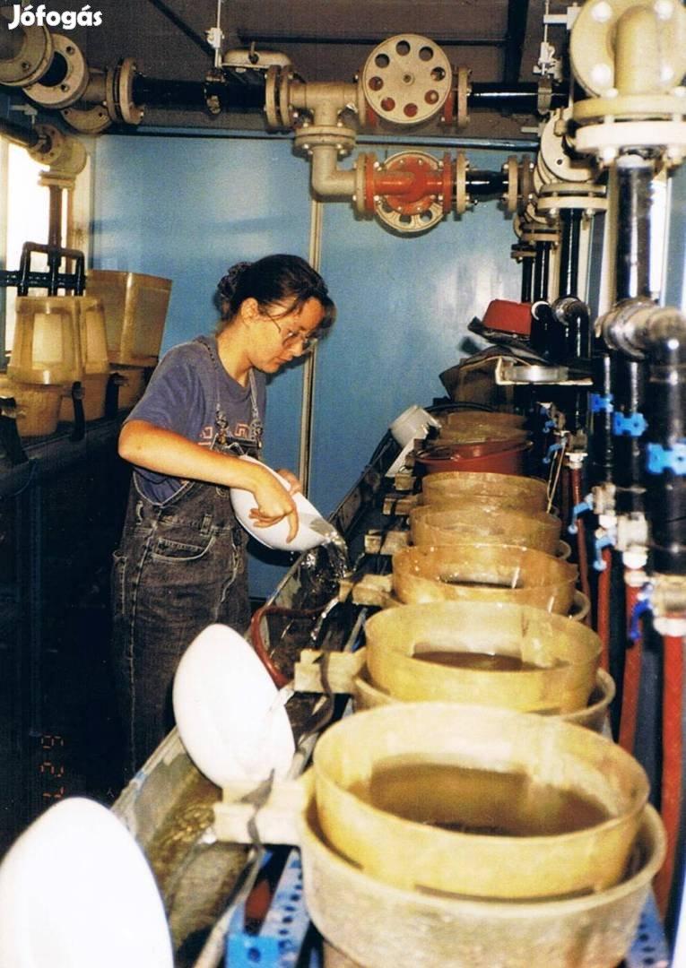 Tiszasüly-Kolopfürdői Tógazdaság eladó