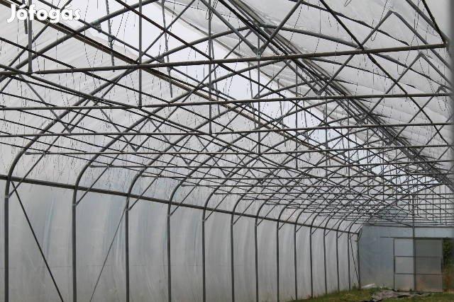 Új, Iker Fóliaház 1000m2 (20x50m) alapterülettel