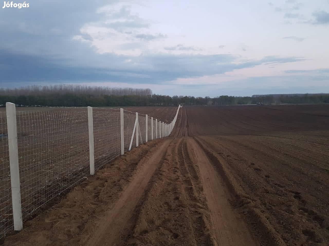 Vadháló kerítésépítés kerítéselem panel kerítésháló kerítés építés