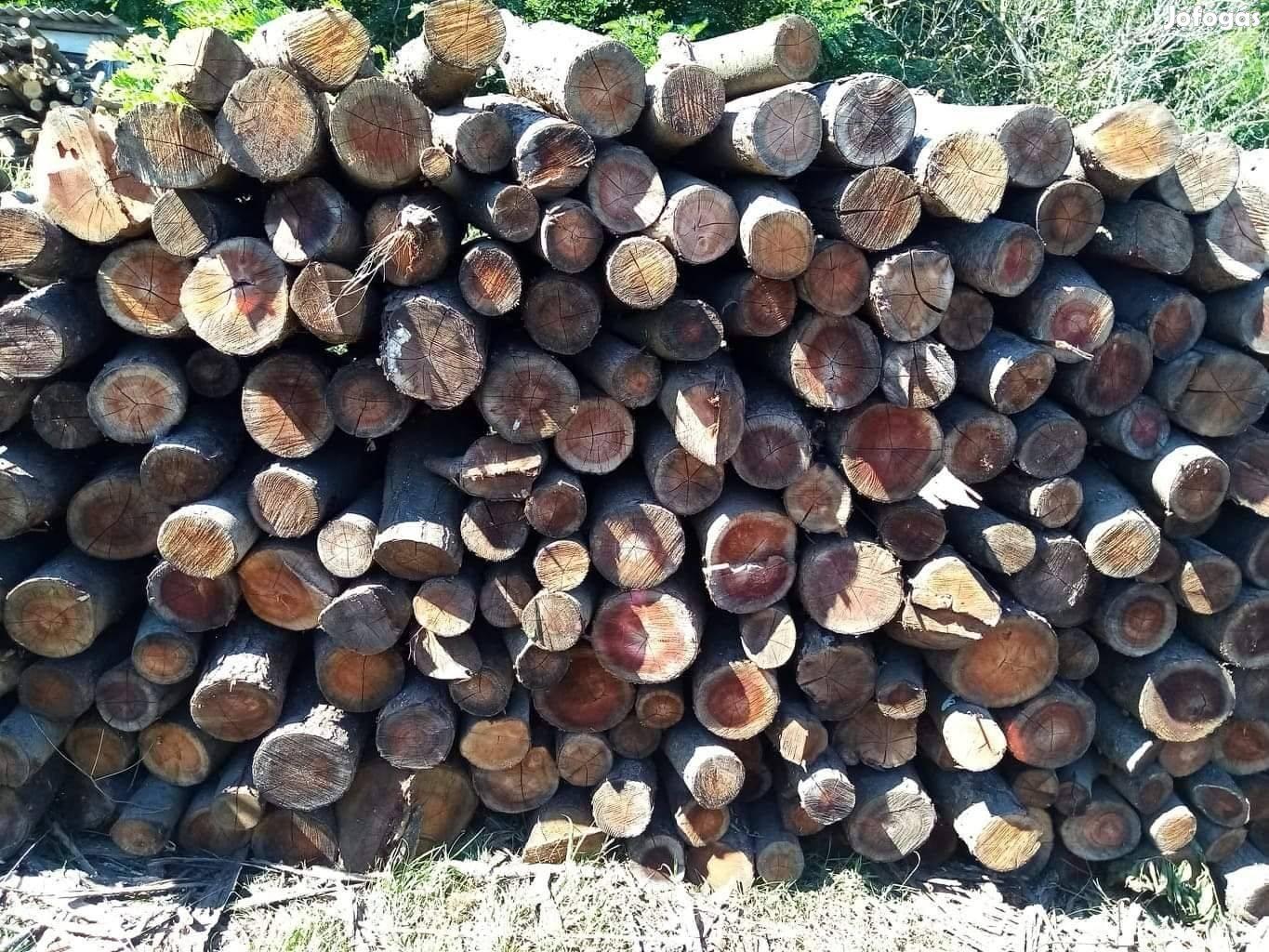 Vastag és vékony jó minőségű tűzifa eladó