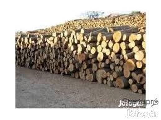 Kiváló minőségű Tűzifa eladó - Gödöllő f07012e892